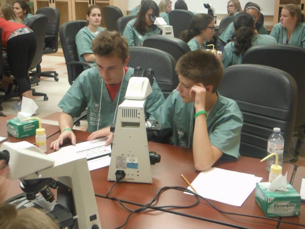 Two campers completing microscope activity