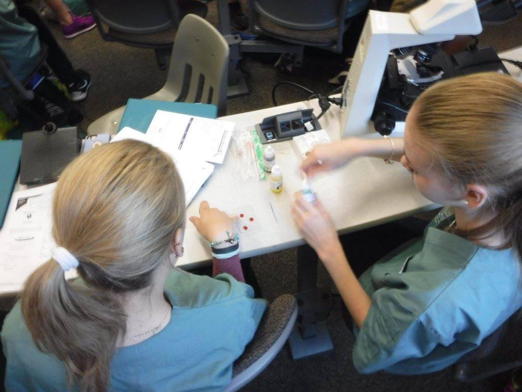 Campers preparing blood sample slide for microscope analysis