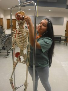 Camper pretending to listen to skeleton model's brain with a stethoscope