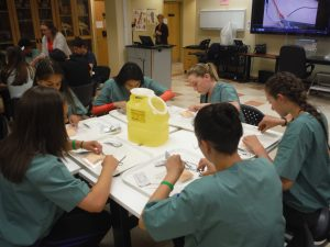 Campers practice suturing techniques while sitting at table in lab