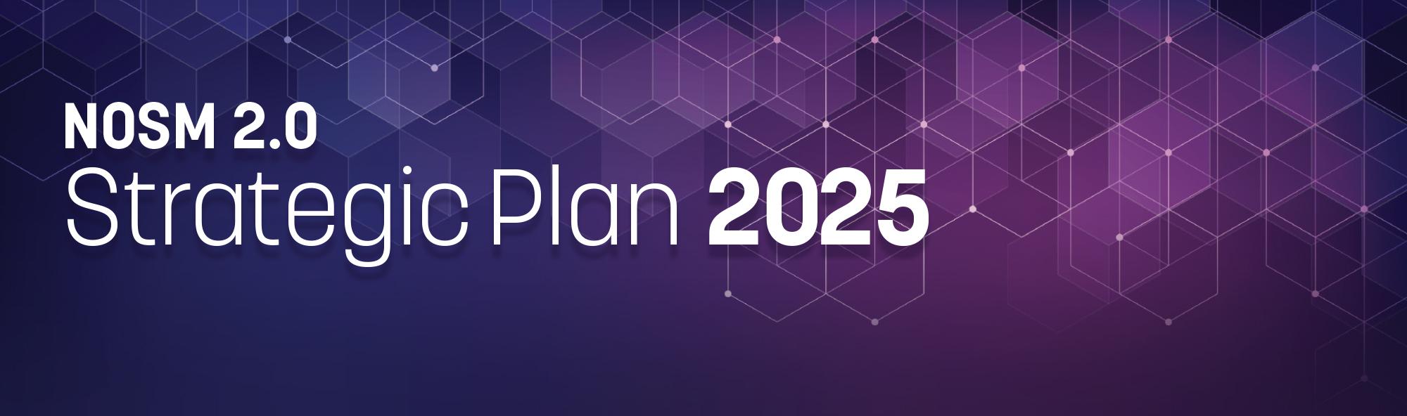 NOSM 2.0 Strategic Plan